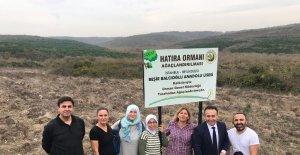 Beşir Balcıoğlu Anadolu Lisesi öğrencilerinden hatıra ormanı