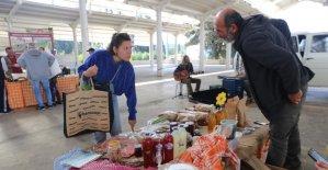 Bodrum Tohum Derneği Üretici Pazarı her Cumartesi Ortakent'te