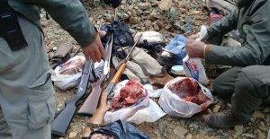 Kaçak yaban keçisi avına 30 bin 390 lira ceza