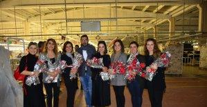 Karadenizli öğretmenlerden kadınlara el