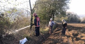 Kaynarca'da 2 dönüm ormanlık alan yandı