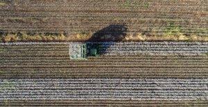 Mardin'de 20 bin dekar tarım arazisi sulandı