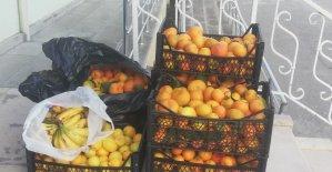 Pazar yerinden çaldığı meyveleri satarken yakalandı
