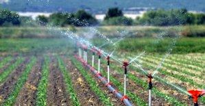 Siirt'te 16 bin 500 dekar tarım arazisi sulandı
