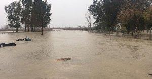 Tarım arazileri sular altında