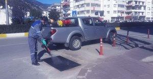 Antalya'da sinekle mücadele